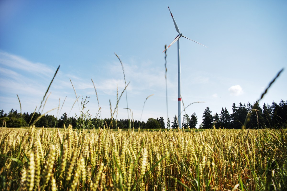 wind_power_wind_energy_pinwheel_power_generation_wind_park_environment_wing_eco_electricity-1215129.jpg!d
